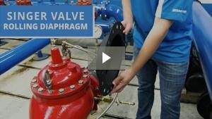 Rolling Diaphragm Video
