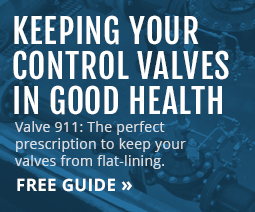Download Keeping Your Control Valves in Good Health Free Guide