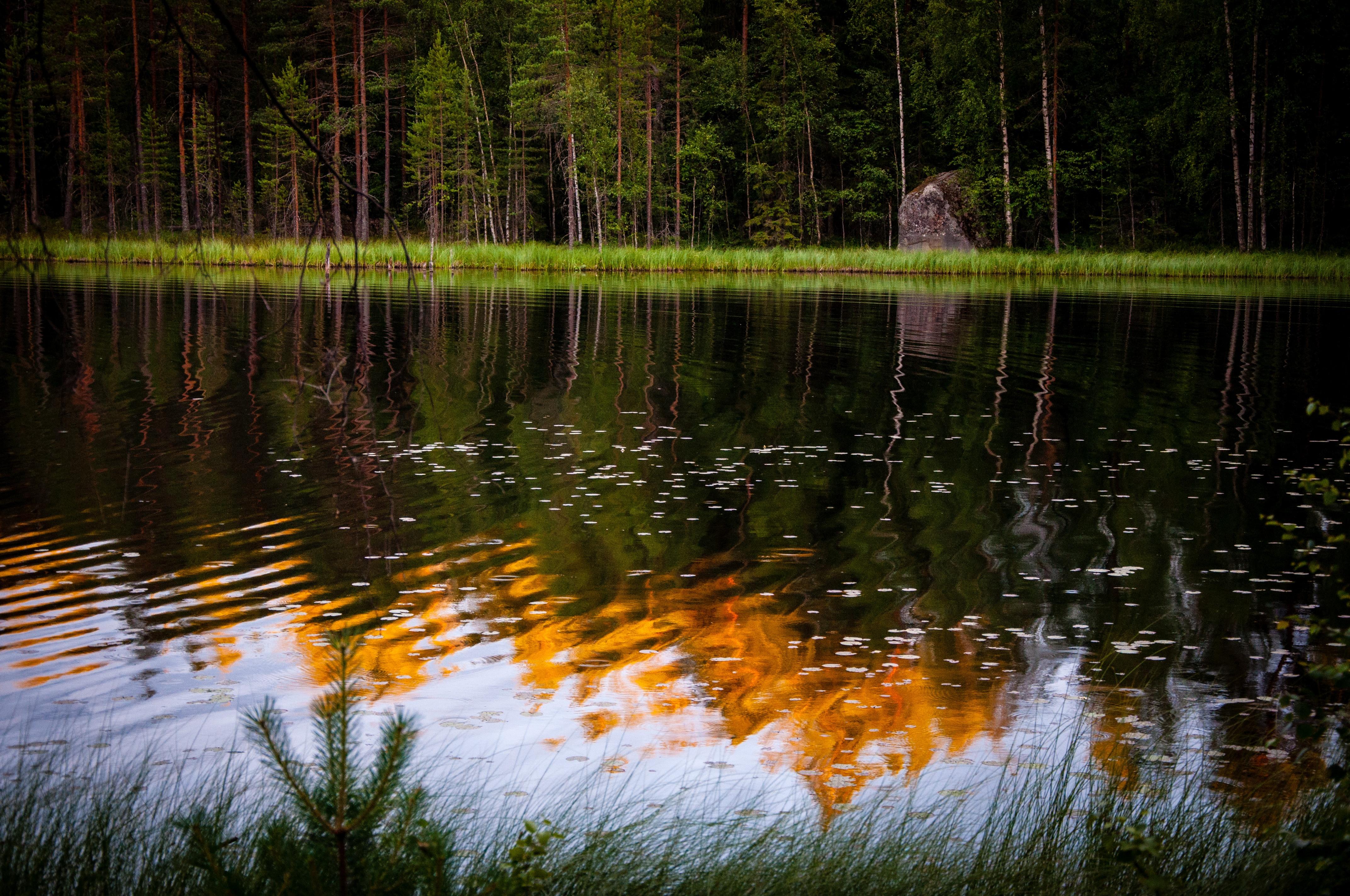Patoka Lake Plant Upgrade requires New Control Valves